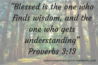 blessed-is-the-one-who-finds-wisdom-and-the-one-who-gets-understanding_proverbs-3_13-1.png